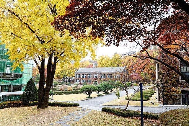 yonsei_school8