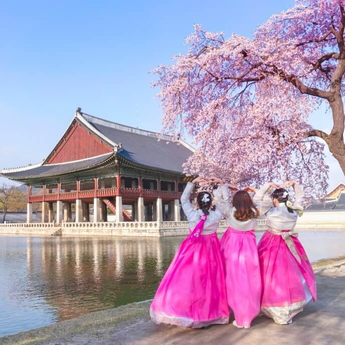 shutterstock_1462313024-korea-square